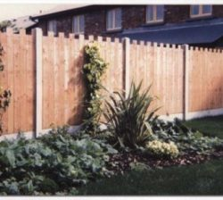 Castle Fencing Dipped