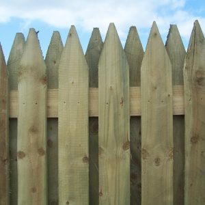 Hit and Miss 4 Inch board Fencing