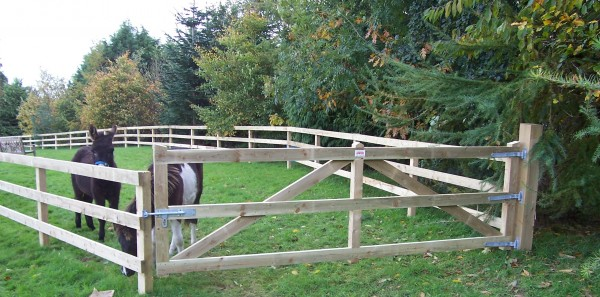 Farm Gates Timber Field Gates For Sale Abwood Ie